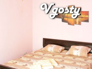 One-bedroom apartment, Center, Sports Palace, Lesia Ukrainka, - Apartments for daily rent from owners - Vgosty