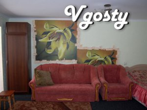 Apartment in Uman! Sofyevka-5min - Apartments for daily rent from owners - Vgosty
