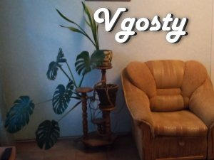 CENTER, VIP, 1 ROOM, WI-FI. - Apartments for daily rent from owners - Vgosty