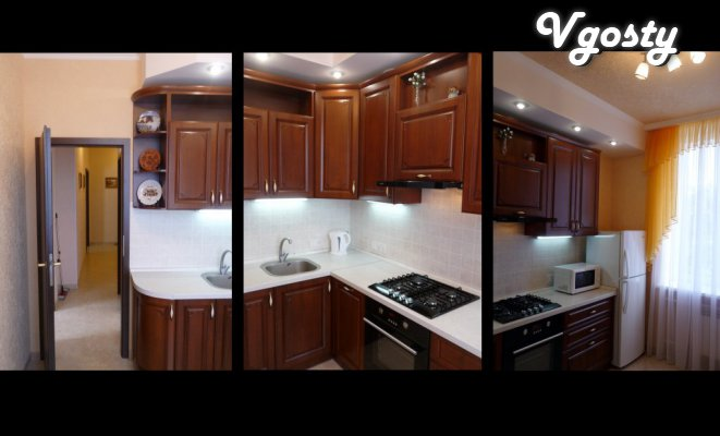 Luxurious 2-room. apartment Center - Apartments for daily rent from owners - Vgosty