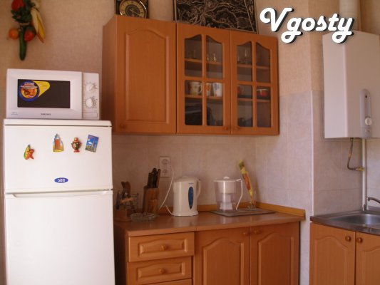 2 apartments for rent in the center - Apartments for daily rent from owners - Vgosty