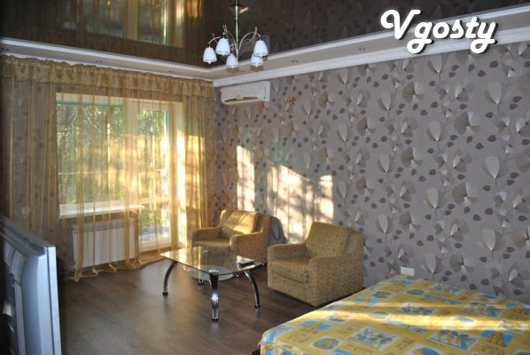 Children's Studio for the world Expo-Donbas - Apartments for daily rent from owners - Vgosty