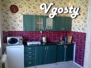 Rent one-bedroom. square. pl. Lenin - Apartments for daily rent from owners - Vgosty