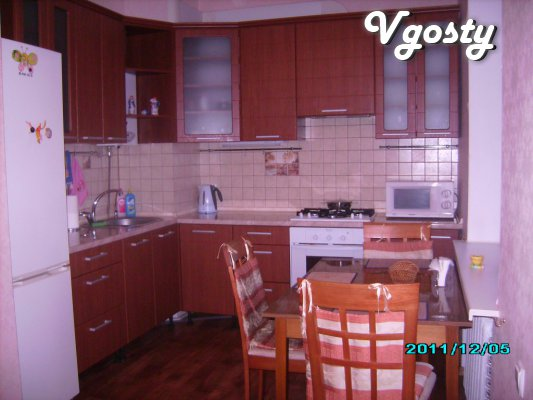 Comfortable, center - Apartments for daily rent from owners - Vgosty