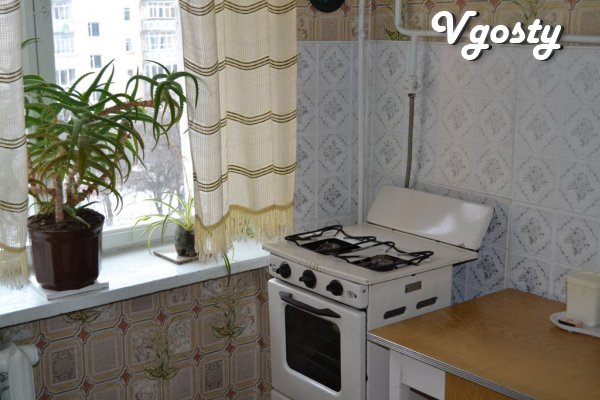 Flat economy class - Apartments for daily rent from owners - Vgosty