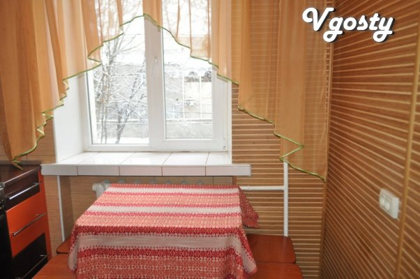 Centre! Daily rent 1 room flat - Apartments for daily rent from owners - Vgosty