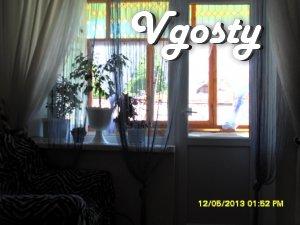 Центральна частина! Подобово здається 1 кімн квартира економ класу - Квартири подобово без посередників - Vgosty
