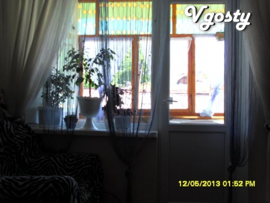 The central part! Daily rent 1 room apartment of economy class - Apartments for daily rent from owners - Vgosty
