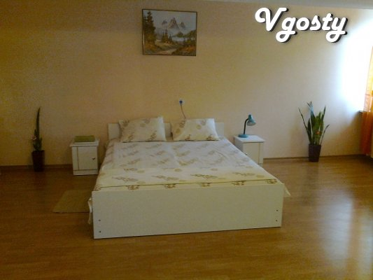 Center, for daily rent 1 bedroom apartment - Apartments for daily rent from owners - Vgosty