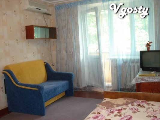 Lenin, № 30, Downtown, Standard - Apartments for daily rent from owners - Vgosty