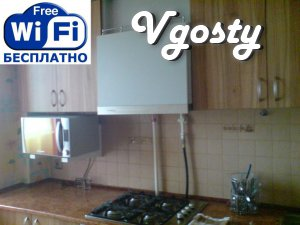 The apartment is near the bus station with wi-fi !! - Apartments for daily rent from owners - Vgosty