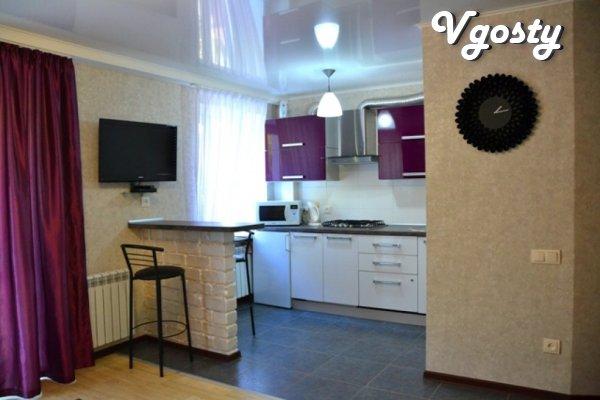 Квартира в центре с новым эксклюзивным ремонтом !!! - Apartments for daily rent from owners - Vgosty