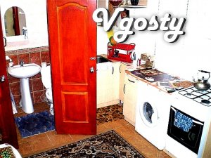 Cheap rent kopeck piece in Nikolaev - Apartments for daily rent from owners - Vgosty