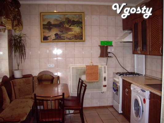 The apartment is in the center, with a fireplace, wi-fi - Apartments for daily rent from owners - Vgosty