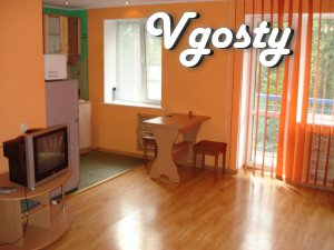 own one-bedroom. in the center of Simferopol - Apartments for daily rent from owners - Vgosty
