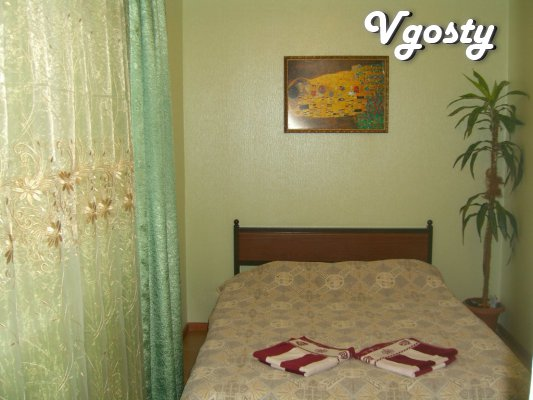 Tsentr.Lyuks.Wi-Fi.Konditsioner.Transfer. - Apartments for daily rent from owners - Vgosty