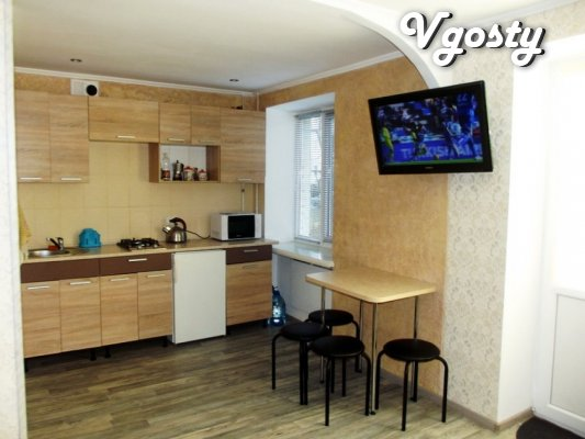 I rent a new studio apartment near Rink in Truskavets - Apartments for daily rent from owners - Vgosty