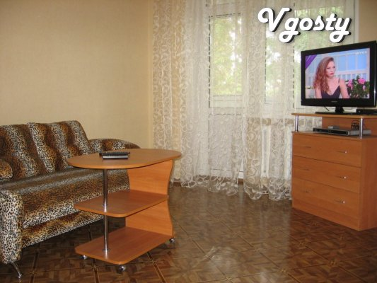 1 bedroom posutochno.WI-FI.Tsentr.Bez intermediaries. - Apartments for daily rent from owners - Vgosty