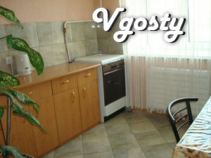 Rent 1 room apartment for rent. Downtown - Apartments for daily rent from owners - Vgosty