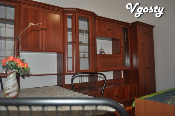 2 BR. elitnom apartment house center. Satellite TV, WI-FI, documents - Apartments for daily rent from owners - Vgosty