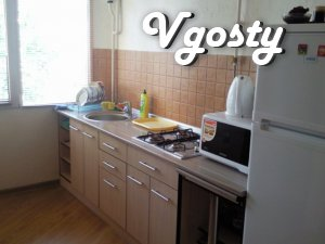 The apartment is close to the waterfront. - Apartments for daily rent from owners - Vgosty