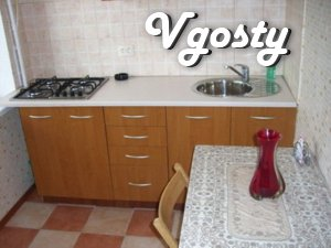 1 bedroom Nyvky, Sіretskaya, comfortable apartment in a quiet location - Apartments for daily rent from owners - Vgosty