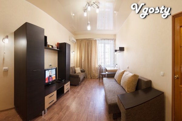 Rent your 1-room apartment in the center of Kharkov near m. Pushkinska - Apartments for daily rent from owners - Vgosty