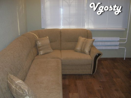 small and cozy 1-bedroom apartment - Apartments for daily rent from owners - Vgosty