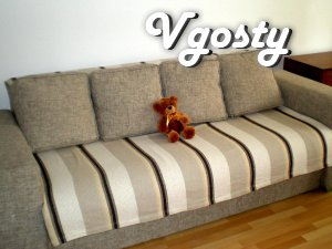 Apartment in the center of Kharkov - Apartments for daily rent from owners - Vgosty