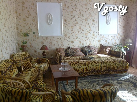 One bedroom apartment in the historical center of Odessa - Apartments for daily rent from owners - Vgosty