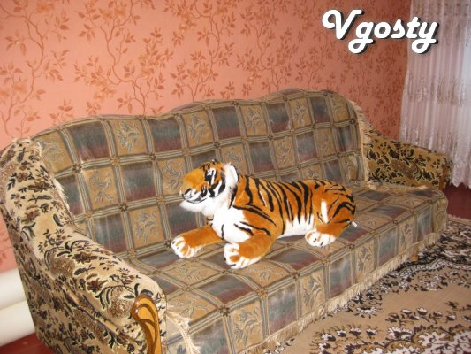 The apartment is renovated, with new furniture , appliances, ... - Apartments for daily rent from owners - Vgosty