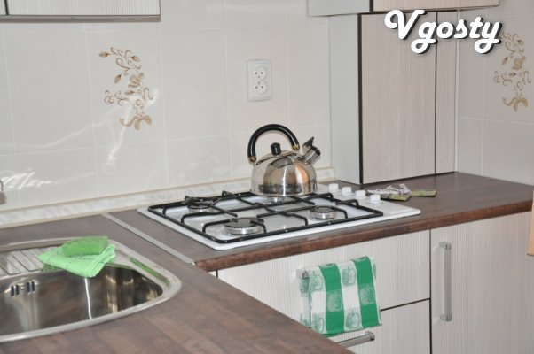 Excellent one bedroom apartment with stylish design and the - Apartments for daily rent from owners - Vgosty