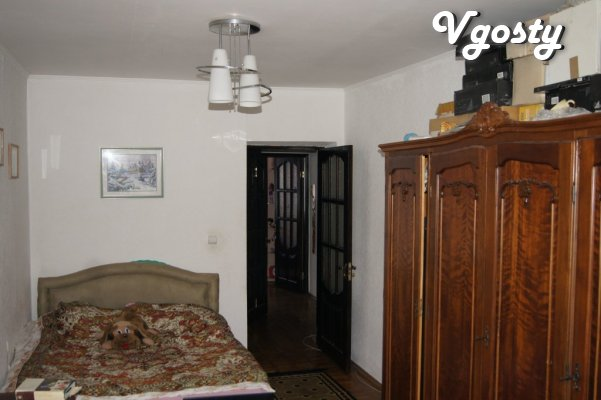 Rent two-hourly flat in the center. The apartment is cozy. - Apartments for daily rent from owners - Vgosty