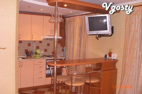 apartment in the center of the city with renovated in 2012, - Apartments for daily rent from owners - Vgosty