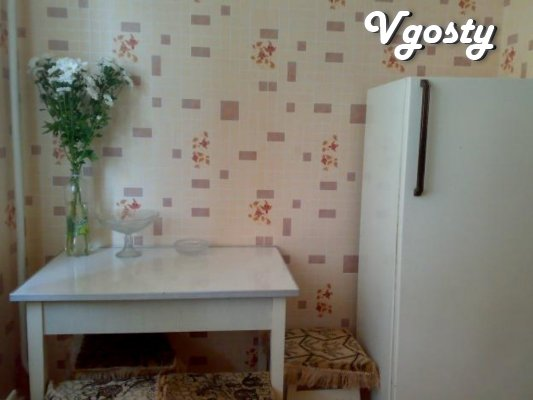Good , bright one -bedroom apartment with a conventional - Apartments for daily rent from owners - Vgosty