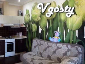 Cozy studio suite at the sea WiFi - Apartments for daily rent from owners - Vgosty