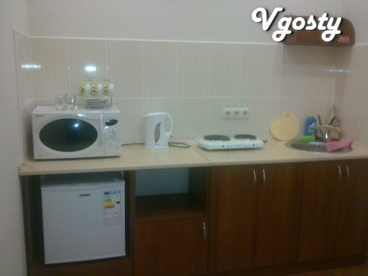 I rent a room in their fiesta. There are all necessary for - Apartments for daily rent from owners - Vgosty