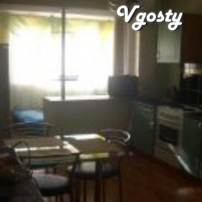 The apartment is in the registry office, daily, hourly. The apartment - Apartments for daily rent from owners - Vgosty