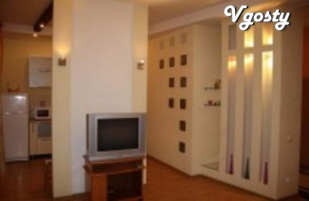 Its a great apartment in the center of Zhitomir, a great - Apartments for daily rent from owners - Vgosty