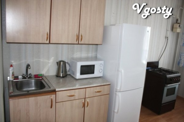 Clean and comfortable apartment in the registrar's office, all ame - Apartments for daily rent from owners - Vgosty