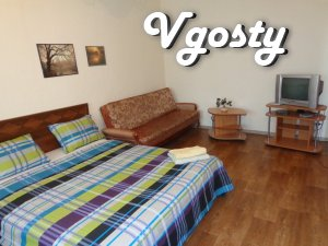 One bedroom apartment, center, Palace of Sports, Hospital - Apartments for daily rent from owners - Vgosty