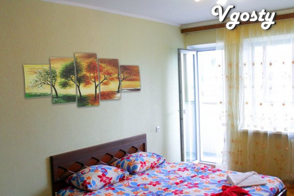 One bedroom apartment, center, Bessarabian market, Basin - Apartments for daily rent from owners - Vgosty