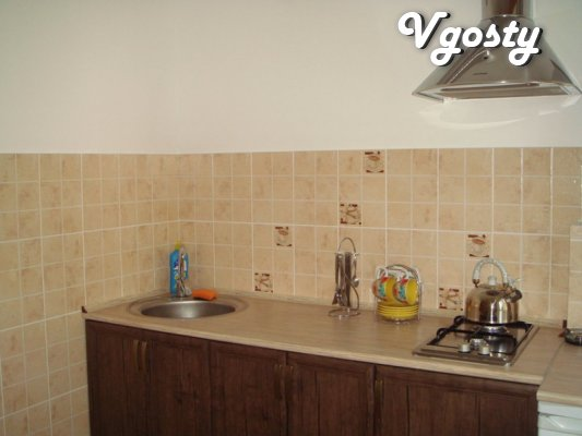 Daily, hourly, on the night of a great apartment on the hostess - Apartments for daily rent from owners - Vgosty