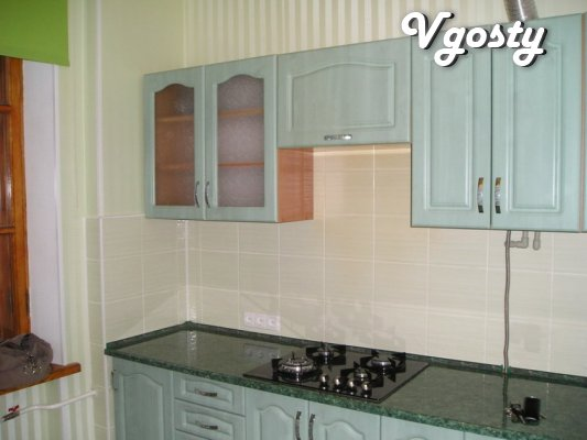 Near Zum, Zhitnaya rinok. Clean and cozy apartment, the water - Apartments for daily rent from owners - Vgosty