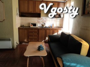 Cozy studio apartment - studio, located on the - Apartments for daily rent from owners - Vgosty