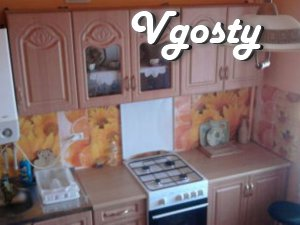 Berehovo.Kvartyra apartments opposite the thermal pools. - Apartments for daily rent from owners - Vgosty