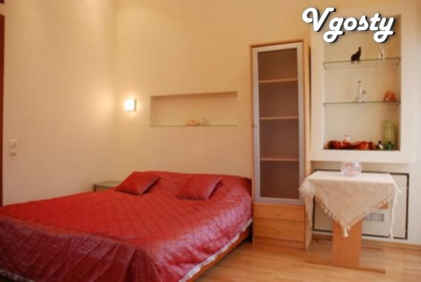 One bedroom studio VIP level c in the author's design - Apartments for daily rent from owners - Vgosty