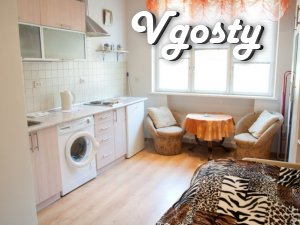 "1-com. sq. ""Econom-class"" is not far from the city center wi - Apartments for daily rent from owners - Vgosty"