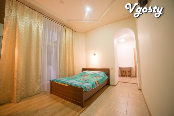 Cozy 1-room. sq. in the city center with WiFi - Apartments for daily rent from owners - Vgosty