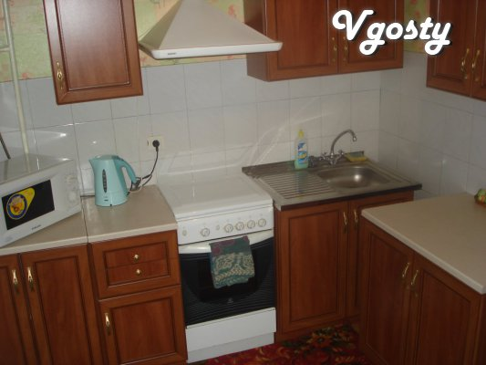 Apartment 1k. in the center of pr.Dzerzhinskogo - Apartments for daily rent from owners - Vgosty